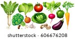 Different Types Of Vegetables...
