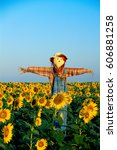 Scarecrow In Field At Sunrise