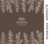 background with rosemary. hand... | Shutterstock .eps vector #606903176