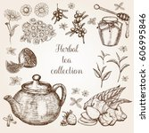hand drawn herbal tea... | Shutterstock .eps vector #606995846