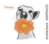 a dog with an orange flower on... | Shutterstock .eps vector #606996152