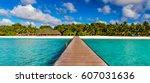 Tropical Beach  Palm Trees ...