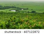 canoeing in kushiro marsh area  ...   Shutterstock . vector #607122872