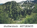 forest mountains landscape... | Shutterstock . vector #607183655
