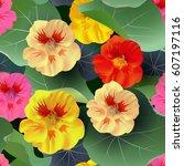 seamless pattern of nasturtium... | Shutterstock .eps vector #607197116