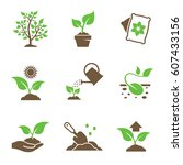 plant growing icons set. green  ... | Shutterstock .eps vector #607433156