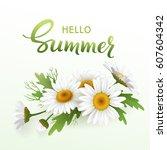 hello summer handmade lettering ... | Shutterstock .eps vector #607604342