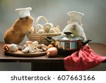 two guinea pigs chef cooking in ... | Shutterstock . vector #607663166