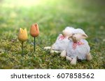 Two Toy Sheep Looking Forward...