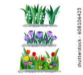 spring flowers lily of the...   Shutterstock .eps vector #608106425