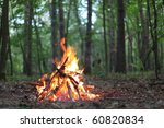 bonfire in the forest. | Shutterstock . vector #60820834