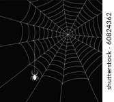 white  spider and spider web... | Shutterstock .eps vector #60824362