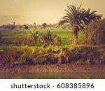 fertile fields on the banks of... | Shutterstock . vector #608385896