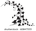 vector frame with branch of ivy | Shutterstock .eps vector #60847555
