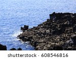 nature | Shutterstock . vector #608546816