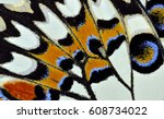 Stock photo multiple colors texture of lime or lemon butterfly wing surface beautiful pattern 608734022