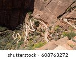 zion canyon national park. utah ... | Shutterstock . vector #608763272