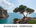 landscapes and details of the... | Shutterstock . vector #608846366
