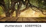 olive tree with wooden  table....   Shutterstock . vector #608899826