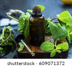 essential mint oil in brown...   Shutterstock . vector #609071372