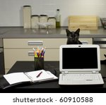 Stock photo a cat in a home office peeping behind a laptop screen on a desk with stationery equipment and 60910588