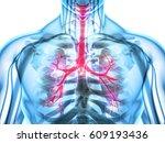 3d illustration of larynx... | Shutterstock . vector #609193436