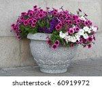 flowers in vase | Shutterstock . vector #60919972