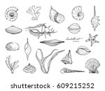 hand drawn seashells collection.... | Shutterstock .eps vector #609215252