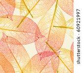 autumn leaves | Shutterstock .eps vector #60921997