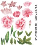 watercolor painted collection.... | Shutterstock . vector #609265766