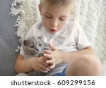 little boy with british kitten... | Shutterstock . vector #609299156