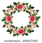 pink rose flowers and buds... | Shutterstock . vector #609327542