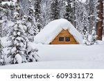 Small House Hidden Under The...