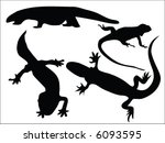vectors of lizards | Shutterstock .eps vector #6093595