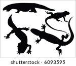 vectors of lizards   Shutterstock .eps vector #6093595