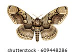 Small photo of Butterfly Brahmaea hearseyi, isolated on white