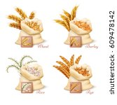 agricultural cereals   wheat ...   Shutterstock .eps vector #609478142