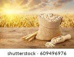 oat flakes in sack. ears of...   Shutterstock . vector #609496976