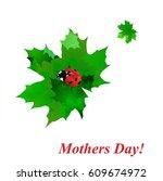 ladybug   Shutterstock .eps vector #609674972
