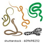 curved slither pythons and... | Shutterstock .eps vector #609698252