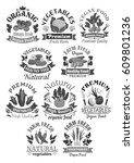 vegetables vector icons of farm ... | Shutterstock .eps vector #609801236