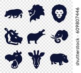safari icons set. set of 9... | Shutterstock .eps vector #609807446