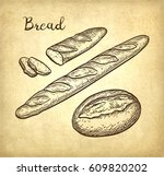 baguette and rustic bread. hand ... | Shutterstock .eps vector #609820202