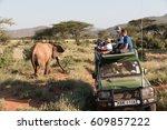 Africa  Kenya  Samburu Nationa...