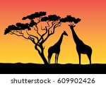 Stock vector silhouette of an animal 609902426