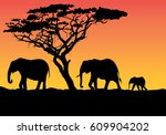 silhouette of an animal | Shutterstock .eps vector #609904202