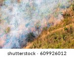 Small photo of View of a wildfire in Ilaveezhapoonchira, a tourist destination located in Melukavu village in Kottayam district near Kanjar, Kerala, India