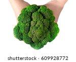 broccoli in hand | Shutterstock . vector #609928772