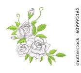 illustration flower spring... | Shutterstock . vector #609995162