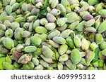 green almonds background | Shutterstock . vector #609995312